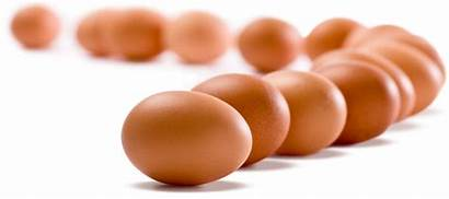 Eggs Egg Transparent Background Amid Likely Rise