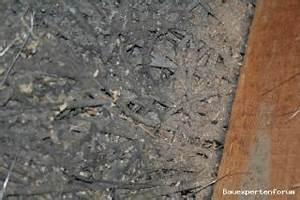 Wie Erkennt Man Asbest : asbest in diesen platten ~ Orissabook.com Haus und Dekorationen