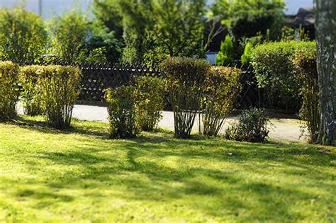 Garten Und Landschaftsbau Neuwied by Garten Landschaftsbau