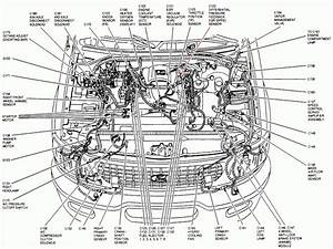 Wiring Diagram  7 2000 Ford Taurus Radio Wire Diagram