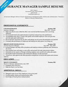 car insurance manager resume sample samplebusinessresume With insurance professional resume