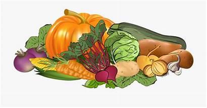 Vegetables Clipart Vegetable Background Transparent Cartoon Clear