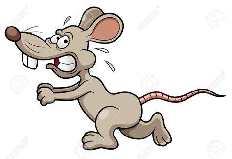 Love Pixar's Ratatouille? Then Get A Pet Rat! 10 Reasons