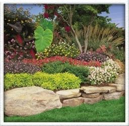 landscaping dallas landscaping company xeriscaping