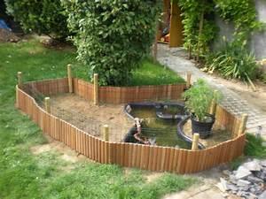 Bassin De Jardin Pour Poisson : tortue pour bassin avec poisson images ~ Premium-room.com Idées de Décoration