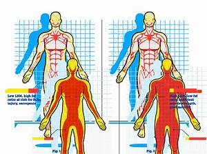 Muscle Loss With Age Chart Is It Time To Move On From Bmi The Atlantic Sponsor
