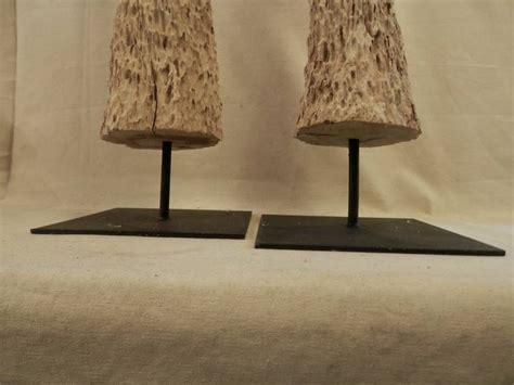 pair  unique petrified wood sculptures  custom display