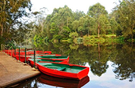 Pictures Of North River Boats by Lane Cove National Park Nsw National Parks