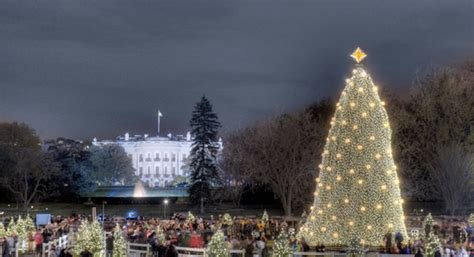 visiting national christmas tree at night event history timeline national tree lighting