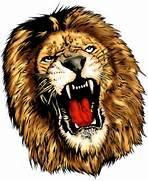 Lion Heads Tumb...