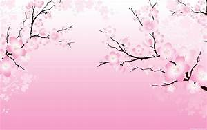 Cherry Blossom Wallpaper In 2019