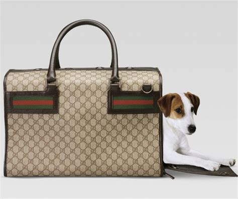 Accessori Per by Gli Accessori Per Cani Fashion Brand Gucci