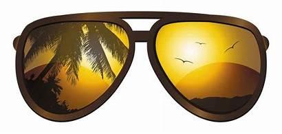 Sunglasses Travel Beach Palm Tree Advisor Mexico