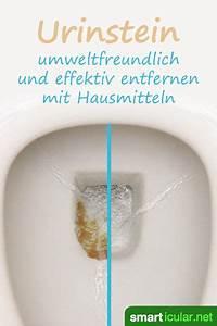 Mittel Gegen Stinkwanzen : urinstein effektiv entfernen mit hausmitteln so bleibt das wc sauber ~ Orissabook.com Haus und Dekorationen