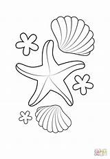 Starfish Coloring Getdrawings sketch template