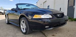 2000 Ford Mustang GT Convertible - Mackee Auctions