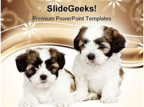 puppy dogs animals powerpoint templates  powerpoint