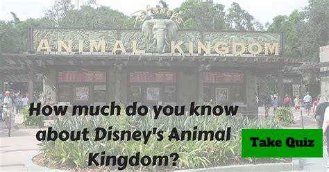 disney animal kingdom trivia