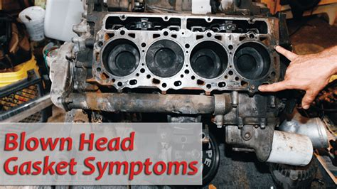 detecting head gasket issues   solution car  japan