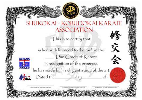 Free Martial Arts Certificate Templates Costumepartyrun