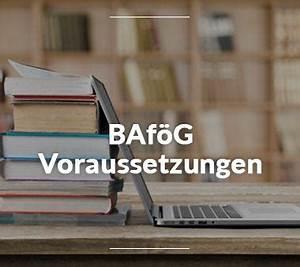 Anspruch Maklerprovision Voraussetzungen : baf g anspruch so bekommst du baf g ~ Frokenaadalensverden.com Haus und Dekorationen