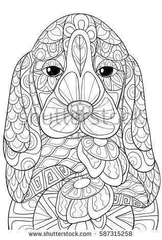 adult coloring bookpages beagle dog art stock vector