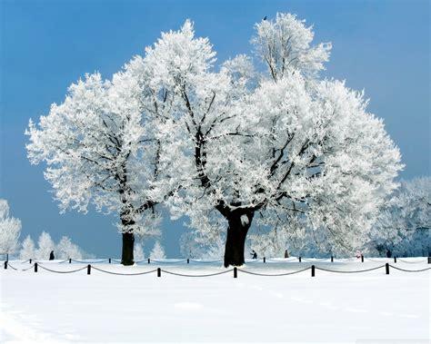 Winter Hd Wallpapers  Hd Wallpapers