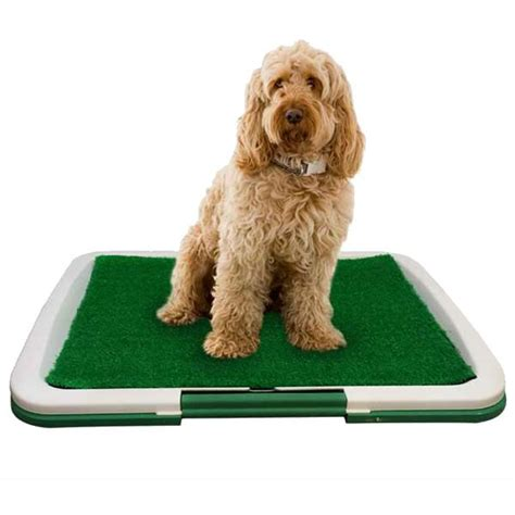 puppy toilet at indoor grass toilet by petplanet on sale free uk delivery