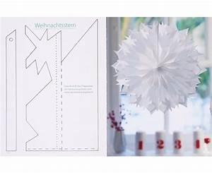 Butterbrotpapier Sterne Vorlage : buch sternenzauber ~ Watch28wear.com Haus und Dekorationen