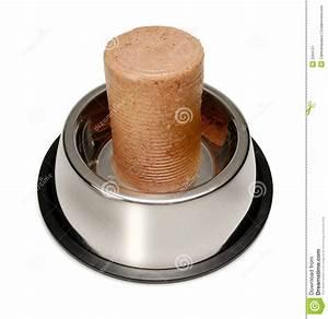 Canned Dog Food Bowl Stock Image - Image: 3294131