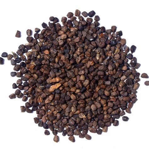 cardamom seeds whole cardamom seeds black cardamom seeds