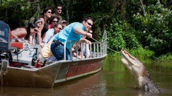 fan boat new orleans things to do in new orleans 2017 176 attractions