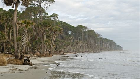 hunting island state park great runs