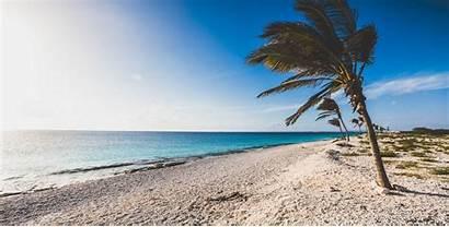 Bonaire Windsurfing