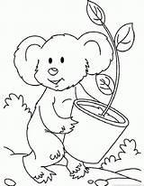 Koala Coloring Tiesto Colorear Dibujo Popular Coloringhome sketch template