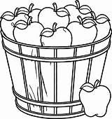Fruit Coloring Basket Bowl Pages Apple Clipart Drawing Empty Printable Apples Template Tree Getdrawings Clip Vegetables Fall Vegetable Picnic Getcolorings sketch template