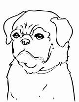 Coloring Dog Pug Dogs Printable Minecraft Cool Colouring Drawing Animals Beagle Puppies Colorings Draw Library Clipart Getdrawings Popular Coloringhome Getcolorings sketch template