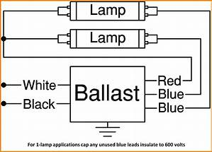 Light Ballast Wiring Diagram 25894 Netsonda Es