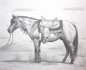 Quarter Horse Pencil Drawings | Horse Art | Pinterest ...
