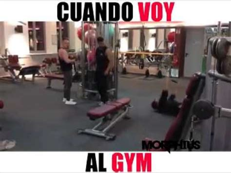 Memes De Gym - memes del gym youtube