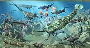 The Silurian Period - Facts and Pictures  Silurian