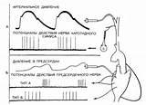 Комбинирование препаратов при лечении гипертонии