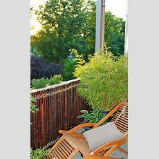 Sichtschutz Aus Bambus  Sichtschutz Selbstde