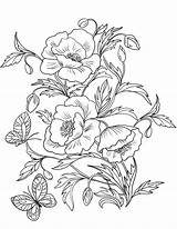 Coloring Poppies Flower Blossom Drawing Poppy Flowers Printable Template Supercoloring Flores Para Nature Dibujos Colorear Sheet Floral Draw Amapolas Páginas sketch template