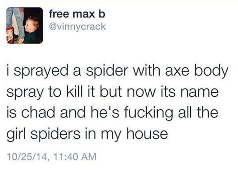 Axe Body Spray Meme - sprayed a spider with axe body spray jokideo