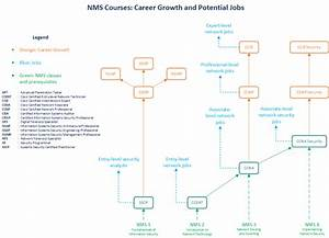 Network Management And Security Career Paths