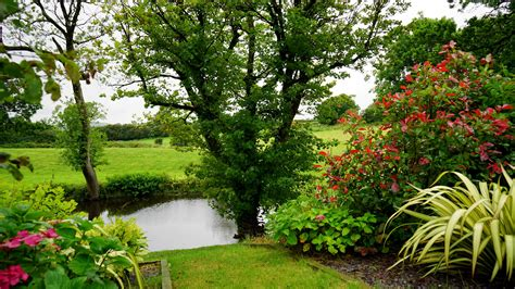 outdoor garden photos free images tree nature grass growth field lawn countryside flower country pond