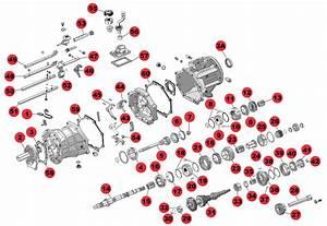 Jeep Wrangler Ax 5 Transmission Diagram  Jeep  Auto Parts