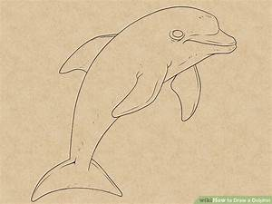 How to Draw a Dolphin: 14 Steps (with Pictures) - wikiHow