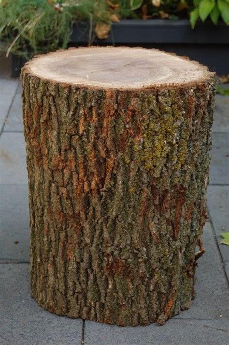 how to make a tree stump end table pin by nancy 39 stout 39 brannon on diy pinterest